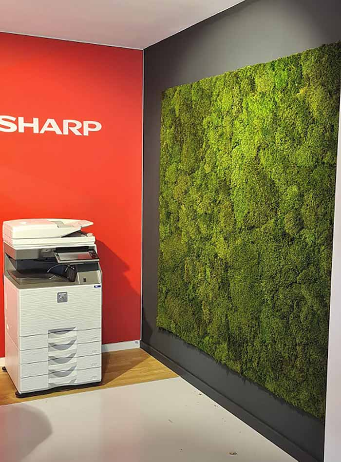 mosschilderij platmos wand kantoor akoestiek