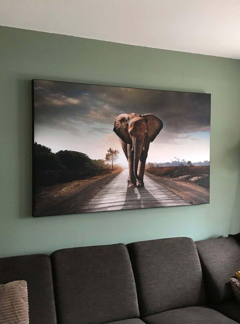 akoestisch fotopaneel woonkamer woning olifant