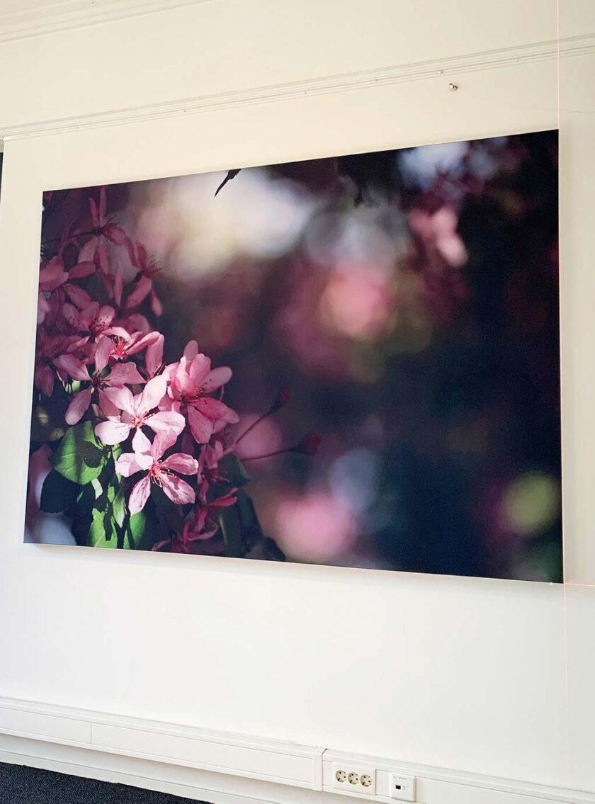 akoestisch fotopaneel bloemen kantoor